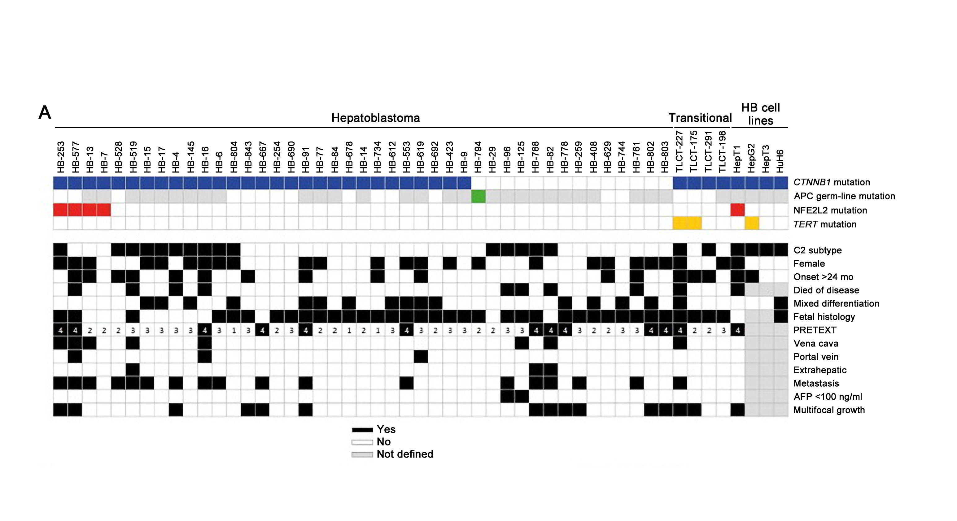 表は肝芽腫に対するCTNNB1、APC、NFE2L2、およびTERT変異の分布を示している。
