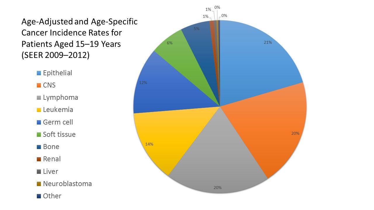 円グラフは15~19歳の患者の年齢調整および年齢別のがん発生率を示している(SEER、2009~2012年)。