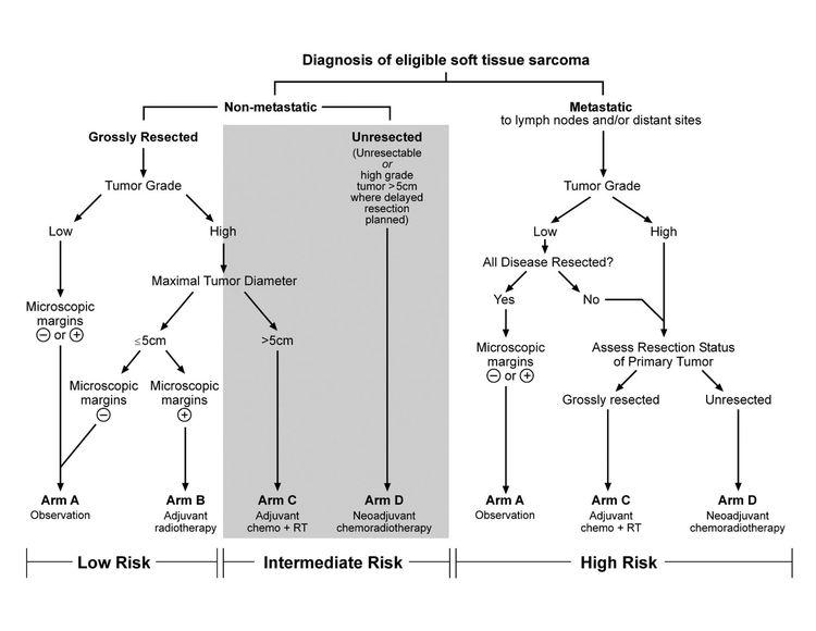 Diagrama que muestra la estratificación de riesgo y asignación de tratamiento del ensayo ARST0332 del Children's Oncology Group.