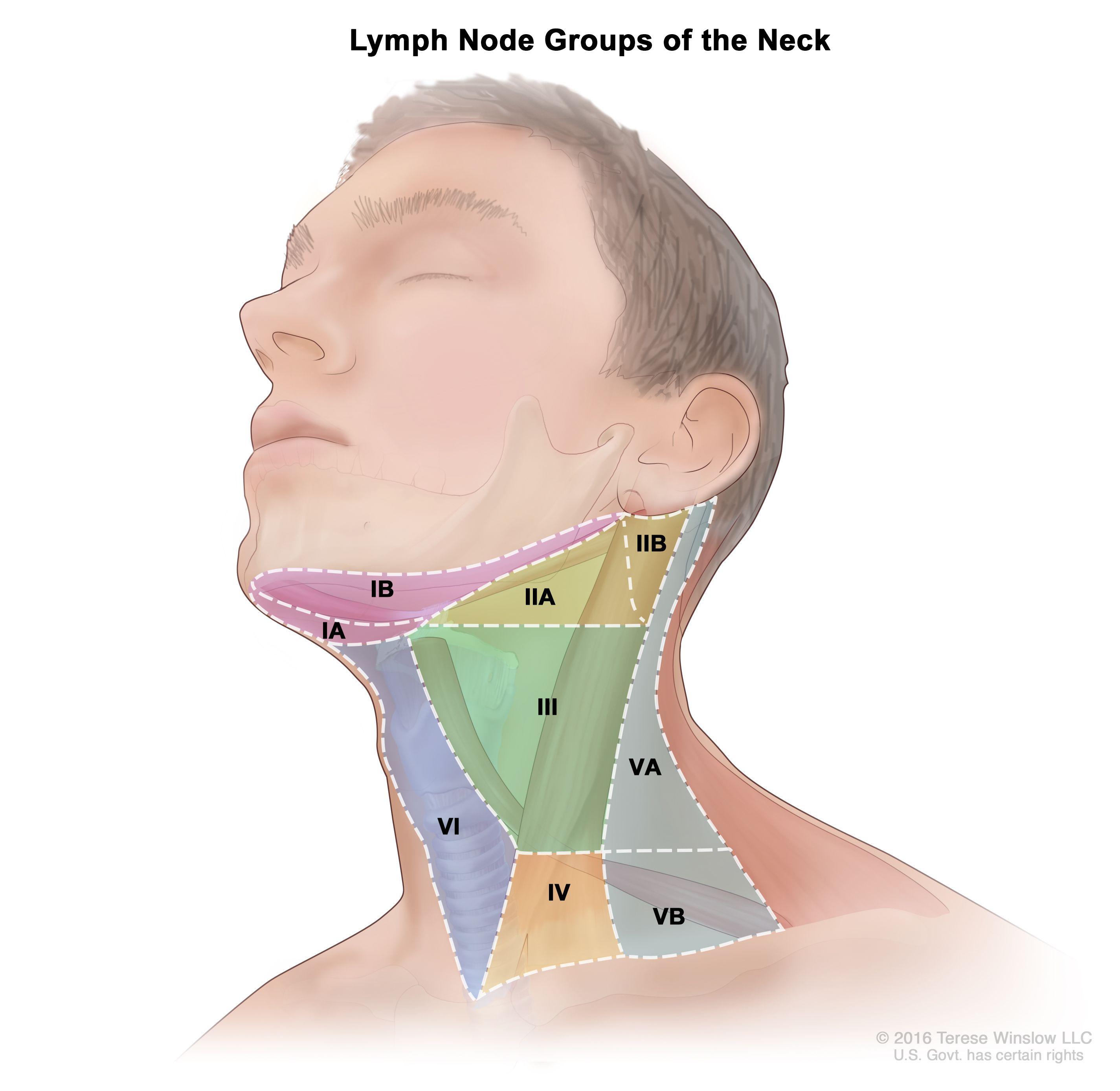 hpv head and neck cancer survival rates tratamentul ambulator al condiloamelor