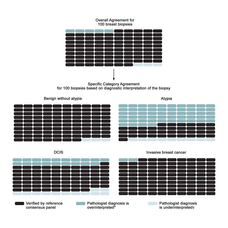 図は、100乳房生検当たりの予測される結果を全体および診断カテゴリー別に示す。